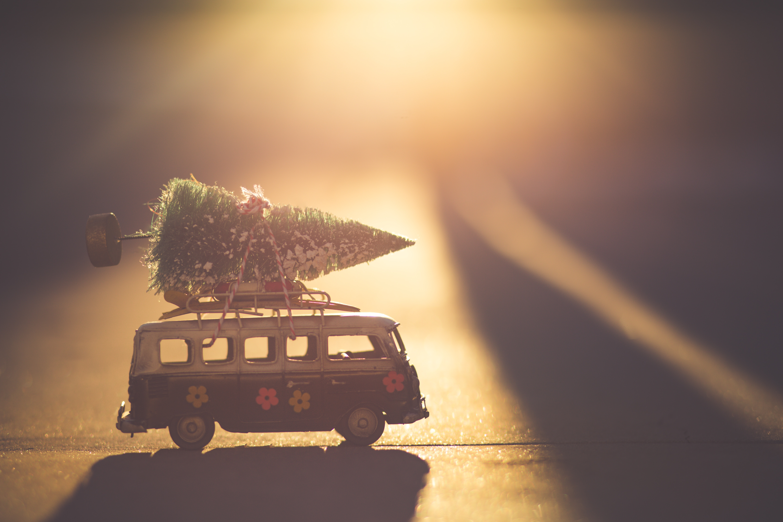 holiday-transit